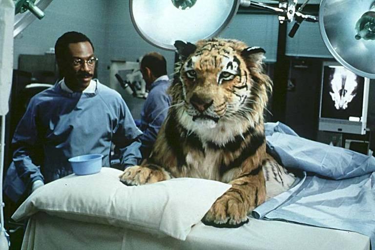 Cena do filme 'Dr. Dolittle', em que Eddie Murphy interpreta médico com dom de conversar com animais