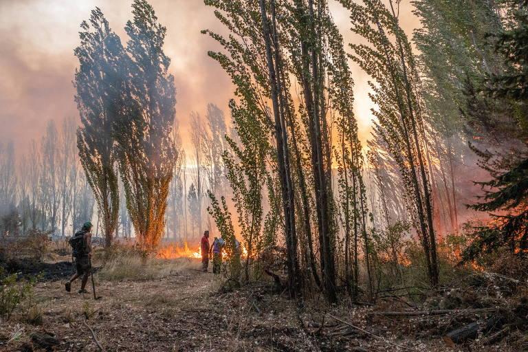 Homem próximo a incêndio florestal na província de Chubut, na Argentina
