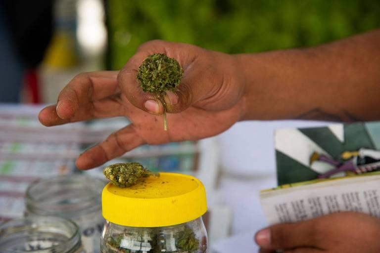 México fica a um passo de legalizar maconha e pode se tornar maior mercado mundial