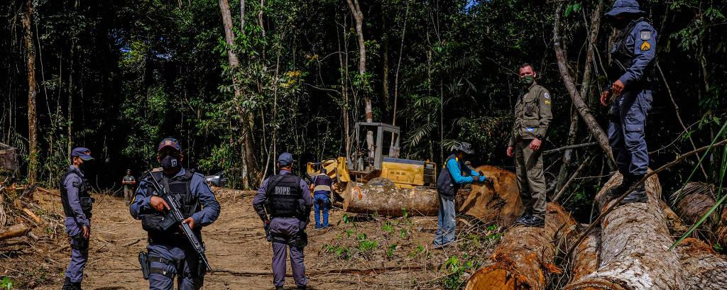 Monitoramento via satélite e ações integradas para combater o desmatamento ilegal