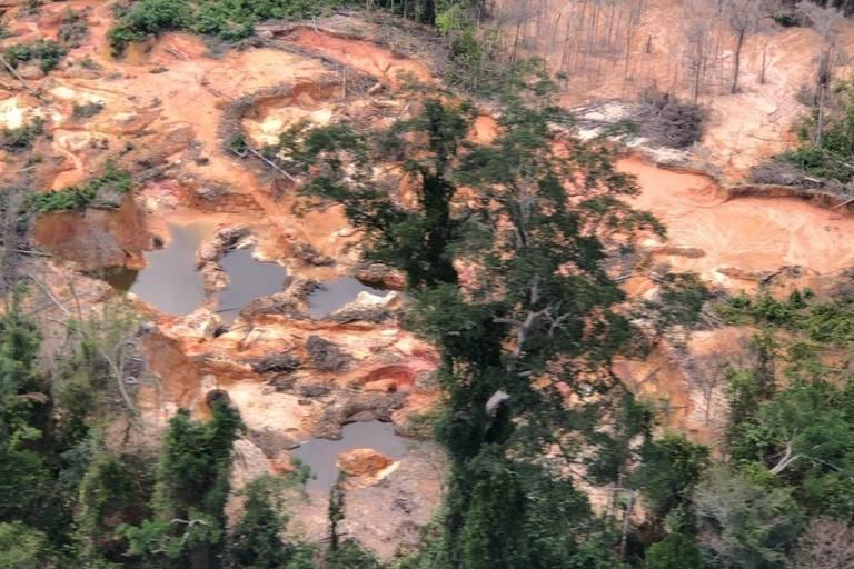 Diversidade sociocultural da Amazônia é essencial para soluções climáticas