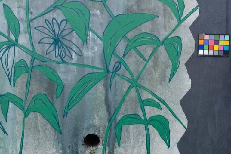 Grafite de plantas