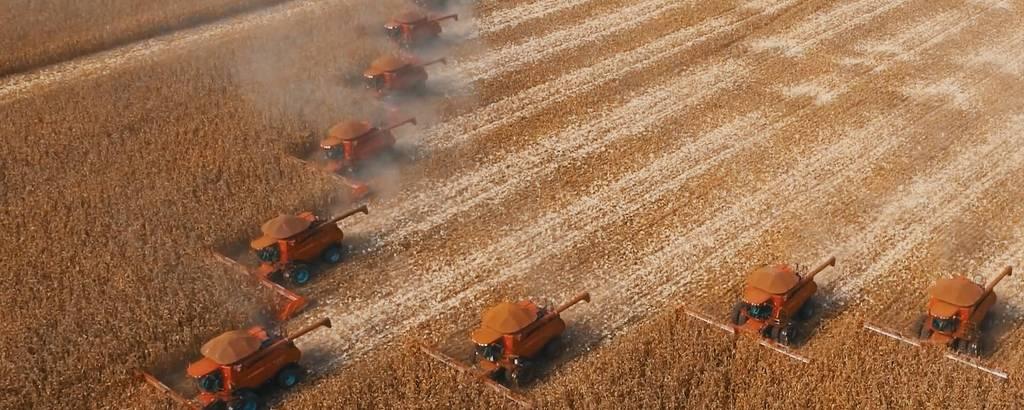 Colheita de soja em Mato Grosso; estado é responsável por 10,2% da produção mundial