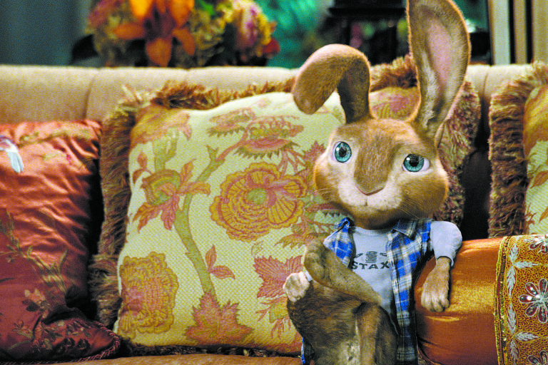 Um coelho de pelagem clara sentado em um sofá com almofadas ao redor