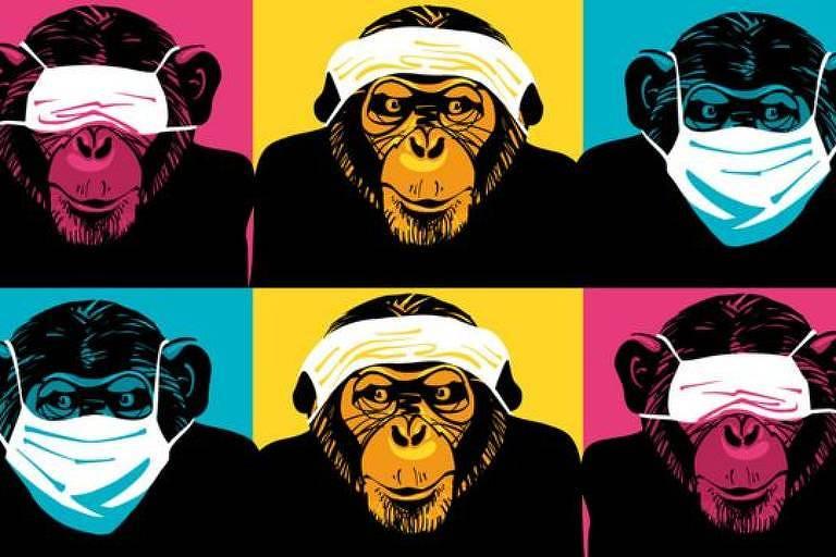 Pesquisas sobre automedicação animal começaram há 35 anos, quando cientista se surpreendeu ao encontrar um chimpanzé mastigando uma planta amarga