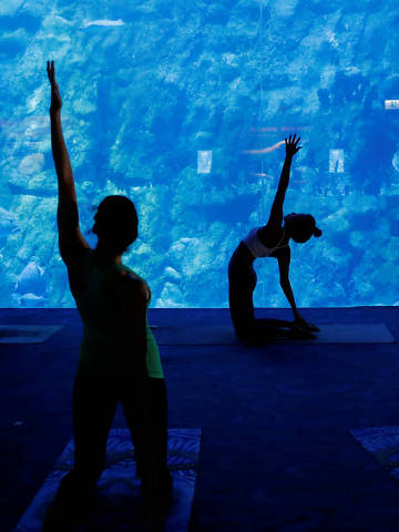 People take part in a yoga class at Ocean Park's aquarium, as a new activity to attract visitors amid a drop in tourists due to the coronavirus disease (COVID-19) outbreak, in Hong Kong, China October 8, 2020. REUTERS/Tyrone Siu ORG XMIT: HFS-GGGTS01