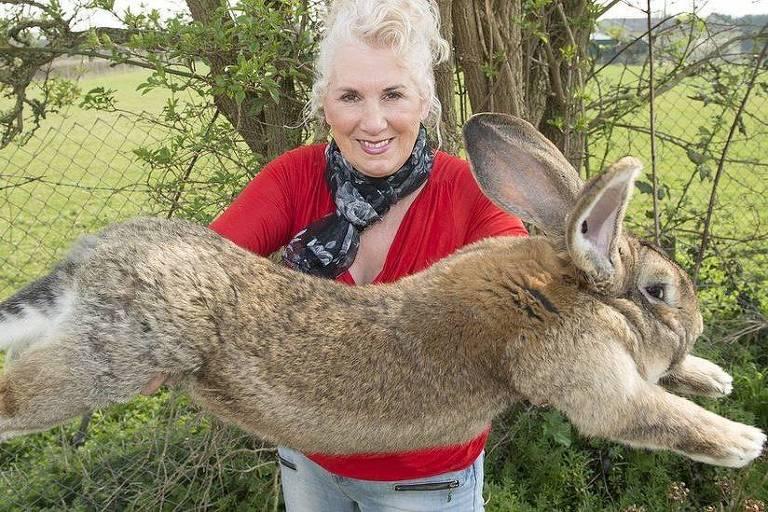 Mulher com um coelho gigante nos braços