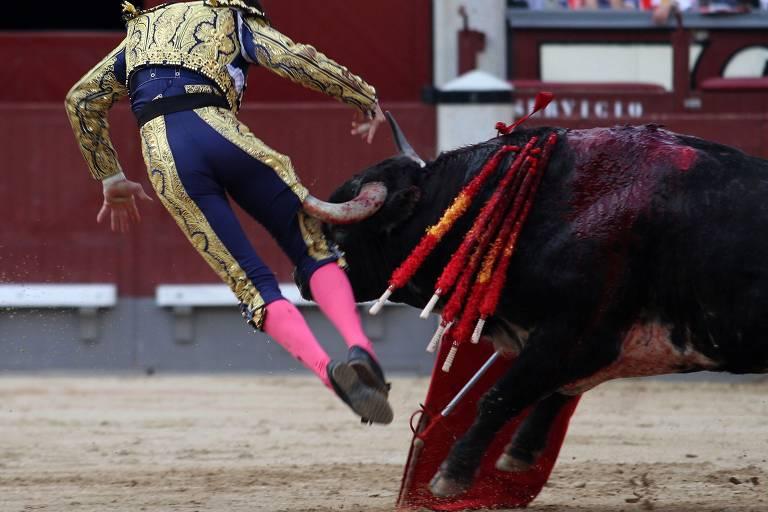 Homem de roupa bordada de ouro e meias cor de rosa choque parece boar ao ser atingido por um grande touro, que tem bandeirolas vermelhas fincadas nos ombros