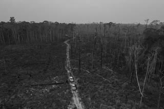 AMAZONIA SOB BOLSONARO