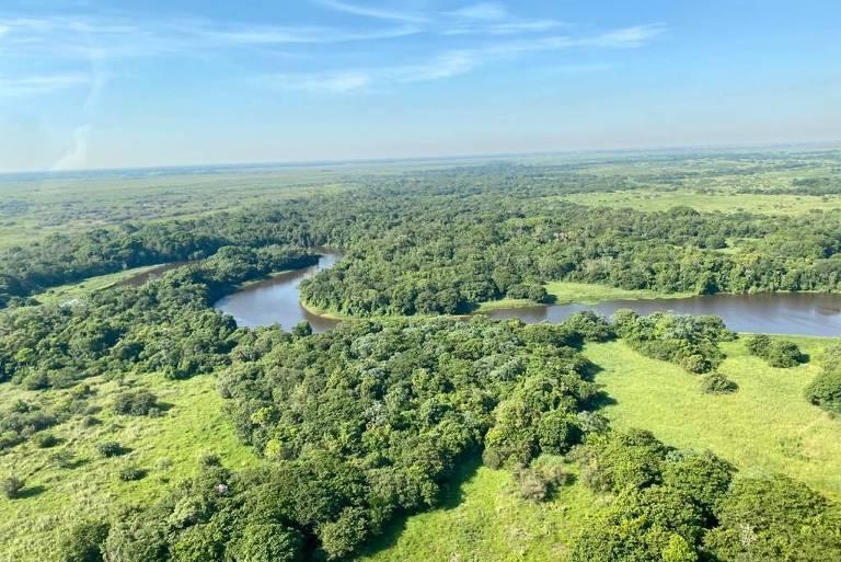foto aérea de vegetação com rio no meio