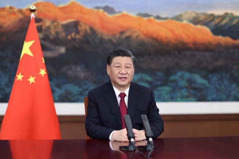 Bancos chineses são acusados de financiar desmatamento em todo o mundo