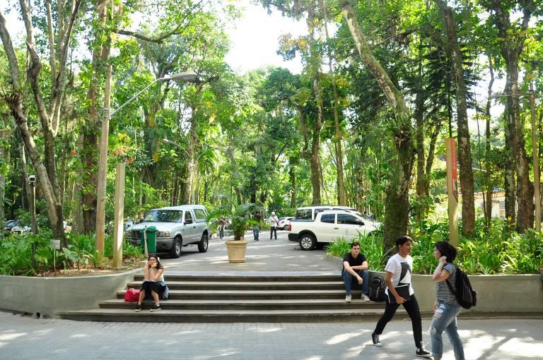 Entrada para uma escada de concreto que dá para uma área com carros estacionados e muitas árvores ao redor