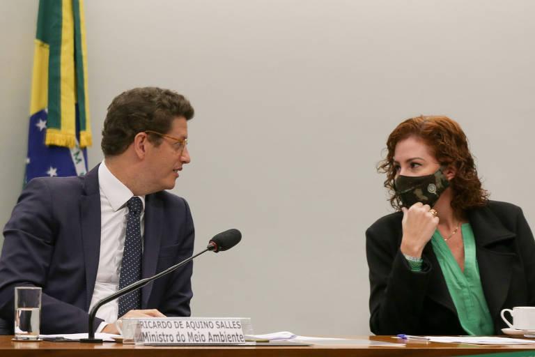 Ricardo Salles e Carla Zambelli estão sentados em uma mesa; ele está à esquerda, sem máscara, e, ela, à direita, com máscara. Eles estão conversando, olhando um para o outro