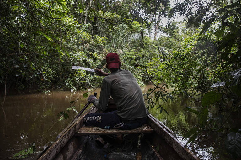 À espera de renovação, Força-Tarefa Amazônia realizou 19 operações contra crimes ambientais em 2 anos