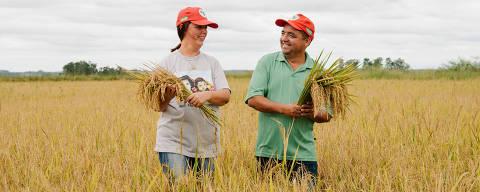 Produtores de arroz orgânico do MST, em Nova Santa Rita (RS); Movimento diz que manterá arroz sob preço justo durante a alta