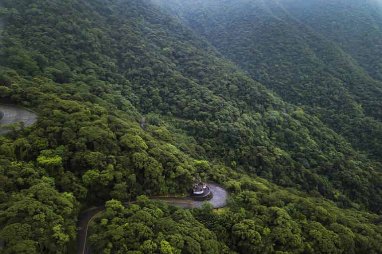 Curva de estrada pavimentada em meio à mata verde na montanha