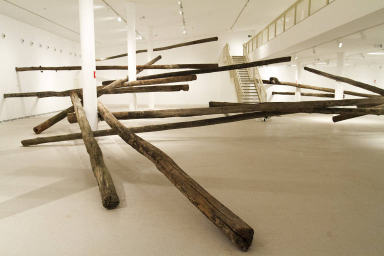 Veja obras de Carlito Carvalhosa