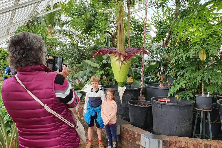 Mulher com bolsa a tiracolo fotografa menino de shorts e agasalho e menina de calça jeans e blusa rosa em frente a enorme flor