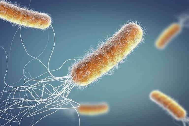Será que as bactérias podem voltar a ser a principal causa de morte da humanidade?