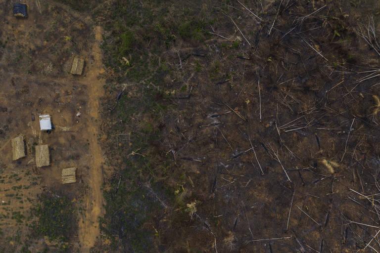 Invasores terão até 98% de desconto para regularizar terras em unidades de conservação de RO