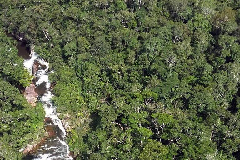 Ministério Público de Rondônia entra com ação contra redução de unidades de conservação