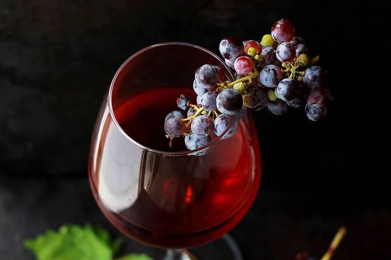 A história da vinicultura no Brasil
