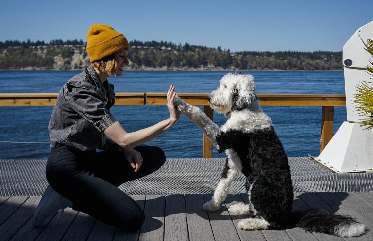 Conheça Bunny, a cadelinha que se comunica por sons e faz sucesso no TikTok