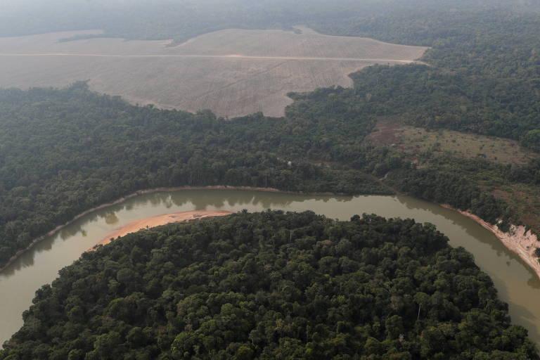 Substituir a floresta amazônica por grandes plantações comerciais eleva temperatura e reduz chuva