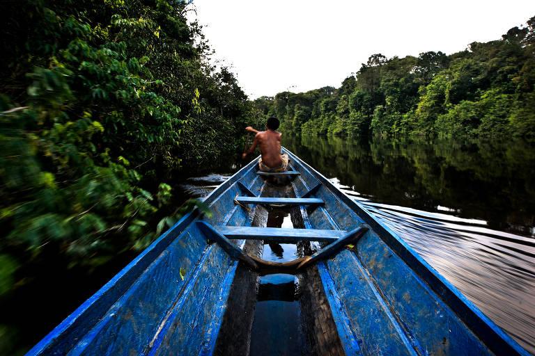 Projetos de desenvolvimento sustentável da Amazônia são escolhidos para investimento