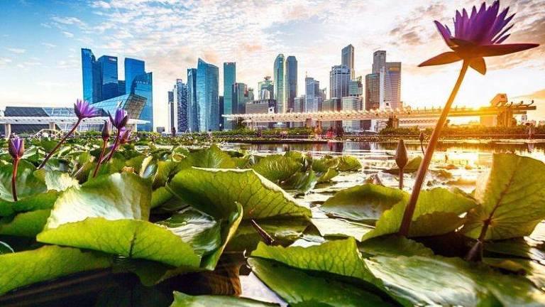 Singapura colocou seu legado cultural de limpeza à prova durante a pandemia de Covid-19