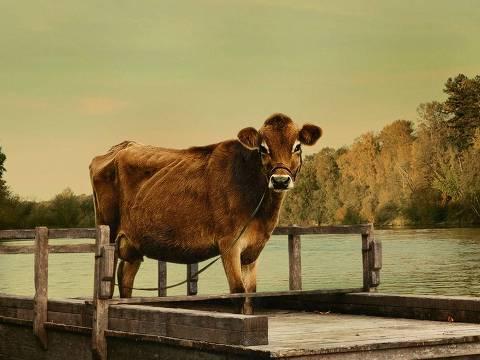 """Cena de """"First Cow"""""""