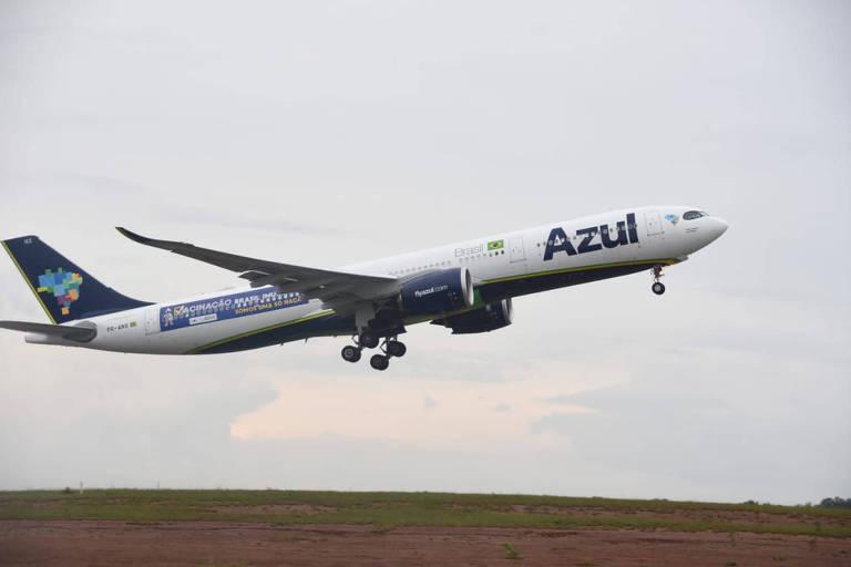 Azul libera cães e gatos em cabine de voo internacional