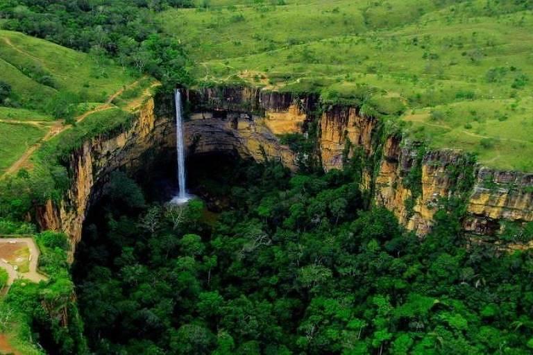 Cerrado é a savana mais biodiversa do mundo e se originou há pelo menos 40 milhões de anos.