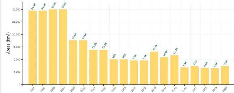 Índice de desmatamento no Cerrado cresceu 12,3% entre 2019 e 2020.