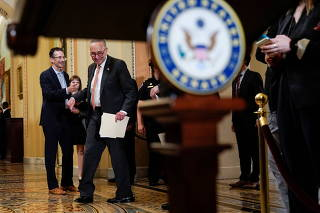 Senate Majority Leader Chuck Schumer (D-NY) speaks to the media in Washington