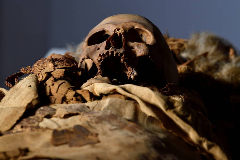 O crânio de uma múmia egípcia é visto no Museu Cívico Arqueológico de Bérgamo, Itália