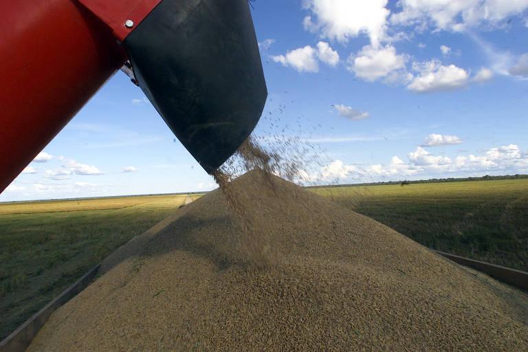 Preços agrícolas começam a ceder no mercado brasileiro