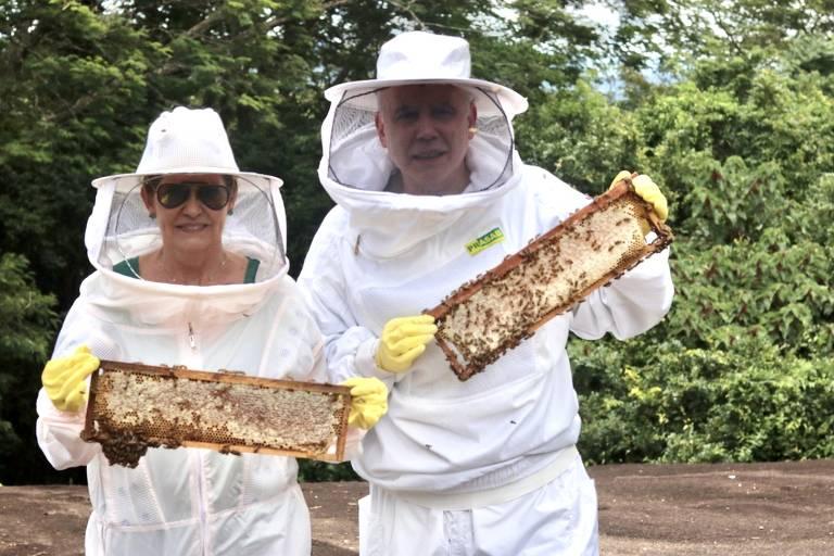 Eugênio Basile e Márcia Basile criaram a Mbee, que produz mel de abelhas brasileiras