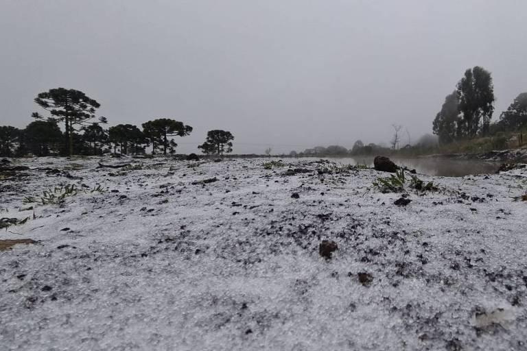 São Joaquim (SC) registra primeira neve de 2021; semana deve ser a mais fria do ano