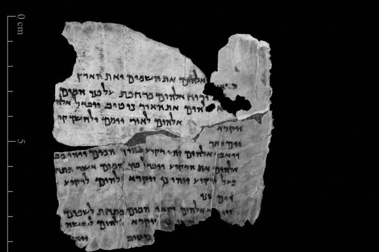 Cientista que desvendou DNA de manuscritos bíblicos estuda herança genética adquirida ao longo da vida