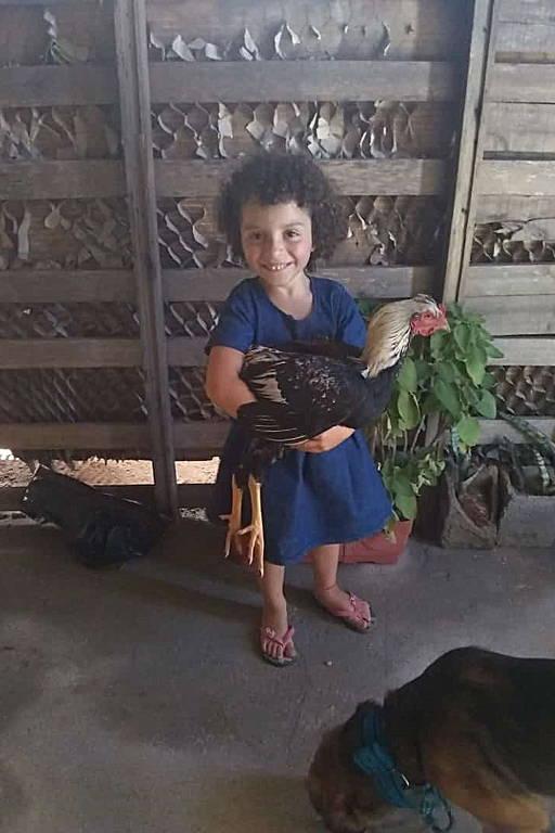 Menina de 4 anos assassinada no ABC gostava de animais e de brincar na terra