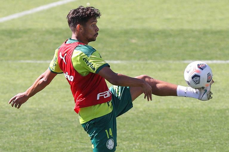 Caneladas do Vitão: Palmeiras é o maior favorito da fase de oitavas da Libertadores