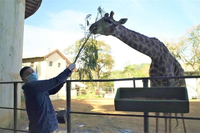 Raul Lemos no Zoológico de Sp