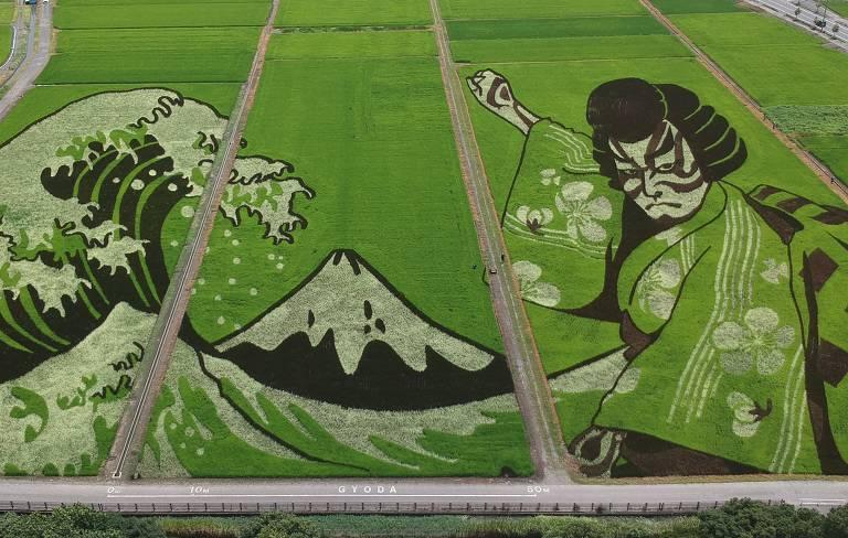 Imagem aérea mostra obra de arte fetia em plantação de arroz, que usam de vários tons da plantas, na cidade japonesa de Gyoda