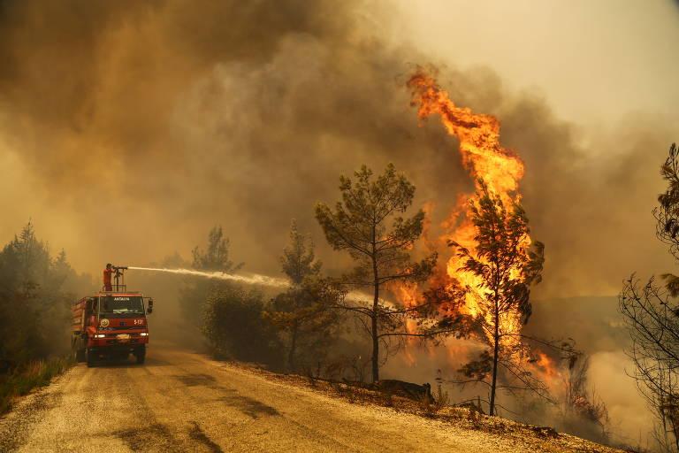 Incêndios florestais na Turquia deixam 6 mortos e milhares de desabrigados