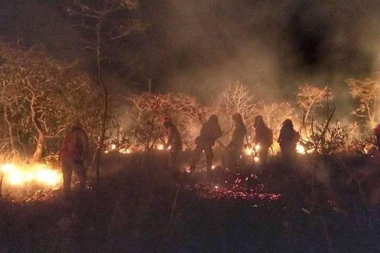 Bombeiros apagam incêndio na caatinga