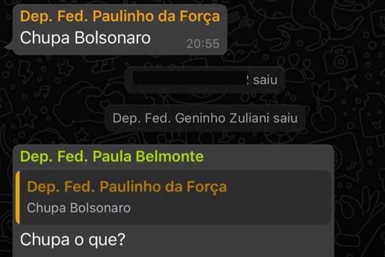 Paulinho da Força diz 'Chupa Bolsonaro' em grupo de políticos sobre voto impresso, e bolsonarista reage