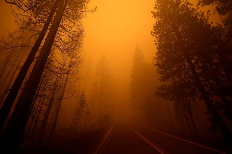 Aumento da temperatura global já causa mais eventos extremos