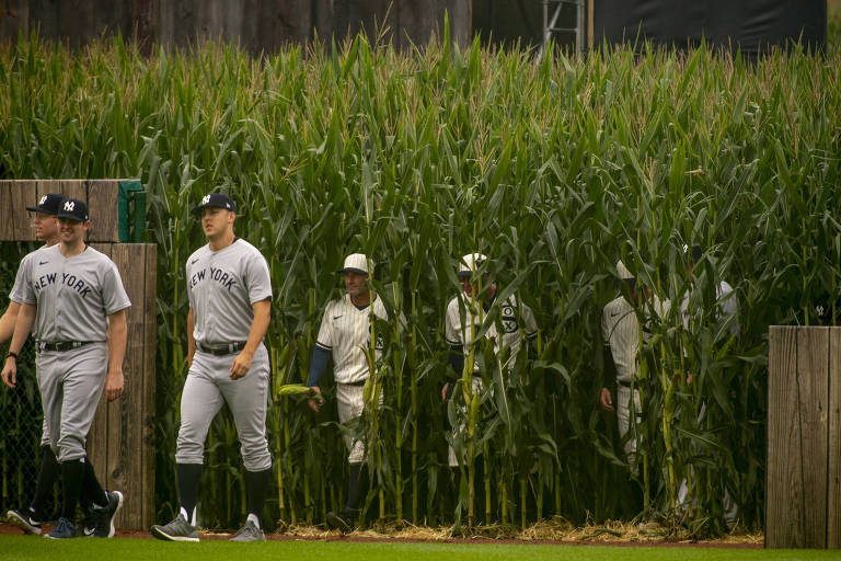 Liga de beisebol dos EUA recria partida do filme 'Campo dos Sonhos'