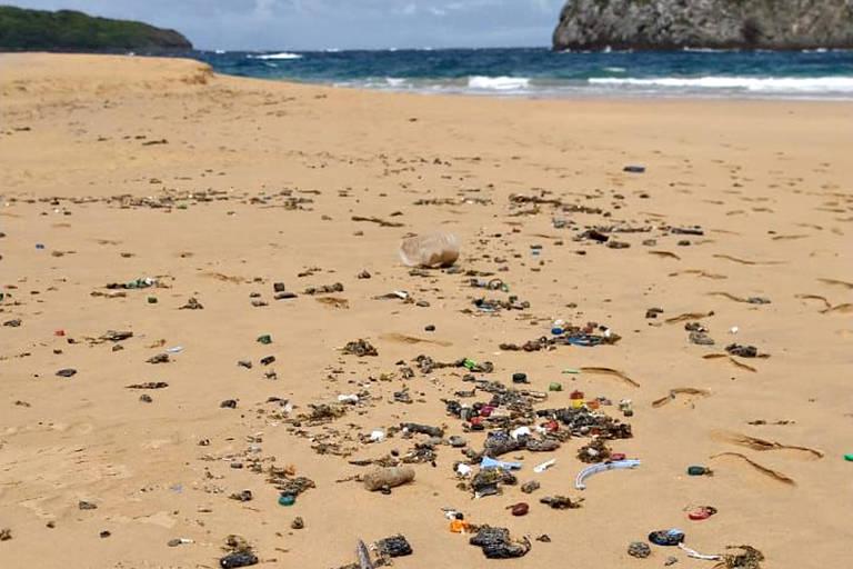 Pedaços de óleo junto a restos de concha e outros detritos na praia do Leão, em Fernando de Noronha